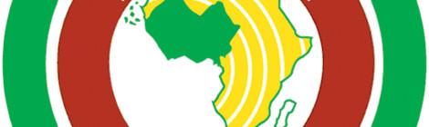 ECOWAS Defense Chiefs Map Out Collaboration