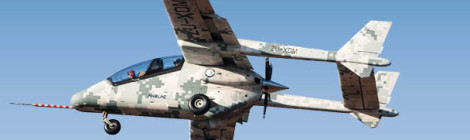 'Homegrown' Plane Takes to the Skies in South Africa