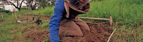 Mozambique Strides Confidently Into New Mine-Free Era
