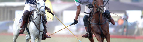 Can Polo Catch On in Africa?