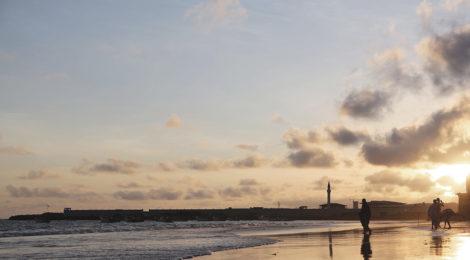 Nations Unite to Preserve Ocean Sanctuaries