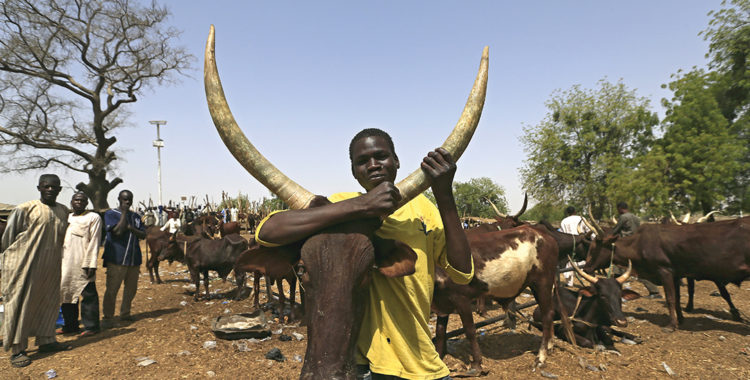 The Fight for Fertile Land
